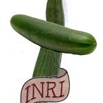 Au nom du concombre